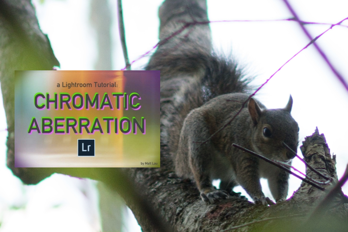 Photography Guide LR1: Chromatic Aberration – What It Is & How To Fix It (a LightroomTutorial)